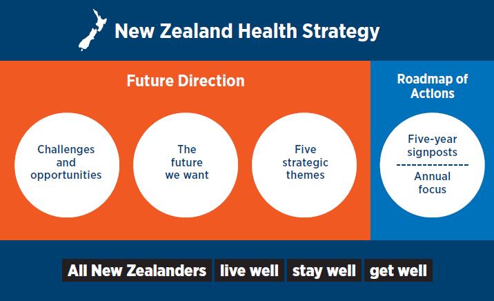 new zealand health system pdf