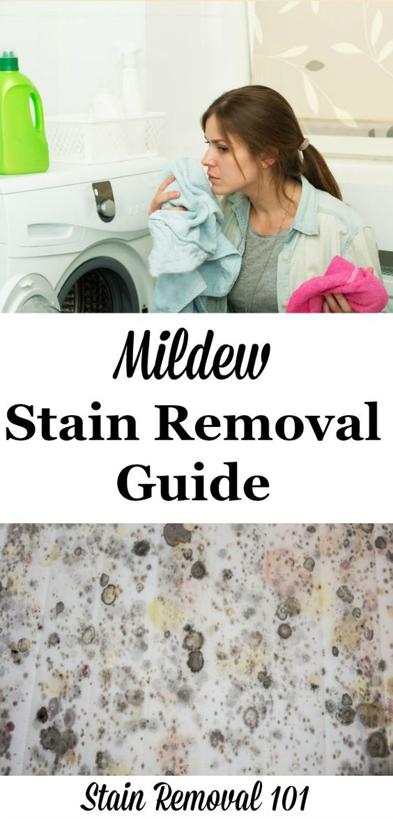 wool carpet stain removal guide