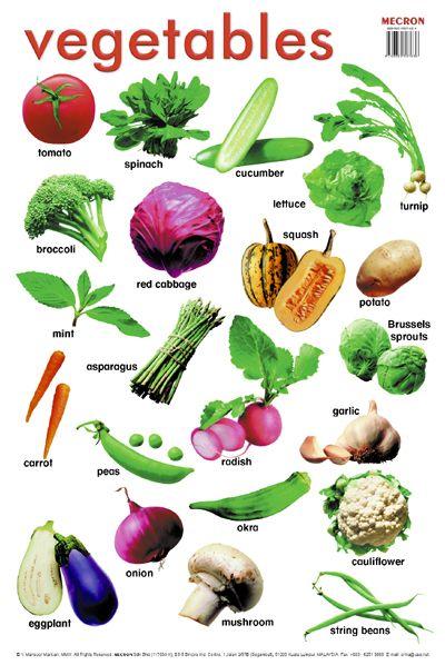 veg urban dictionary