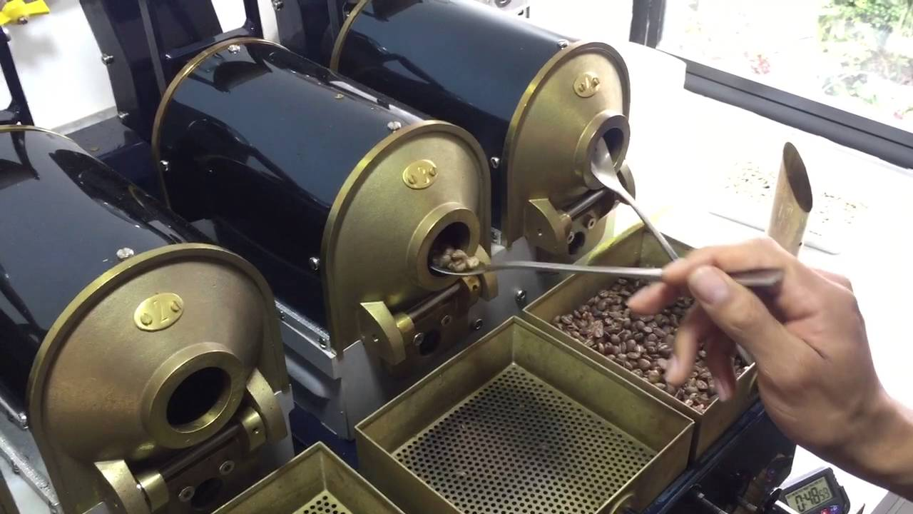 sample roaster nz