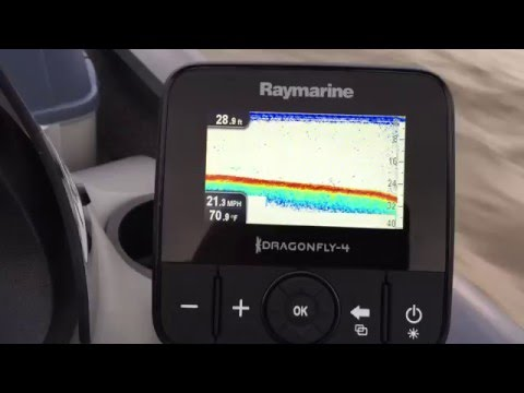 raymarine dragonfly 4 pro manual